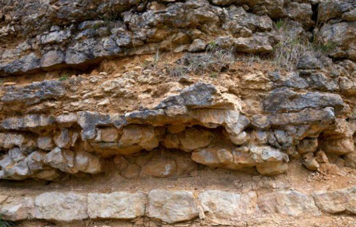 Strumenti fatti dall'uomo datati 300 milioni di anni fa?