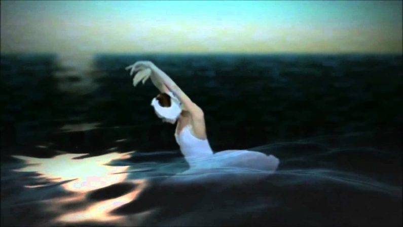 Il balletto 'La Morte del cigno'