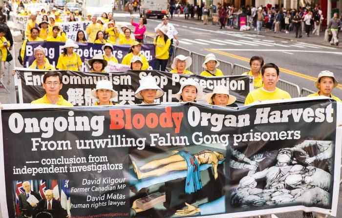 Traffico di organi in Cina, il business continua