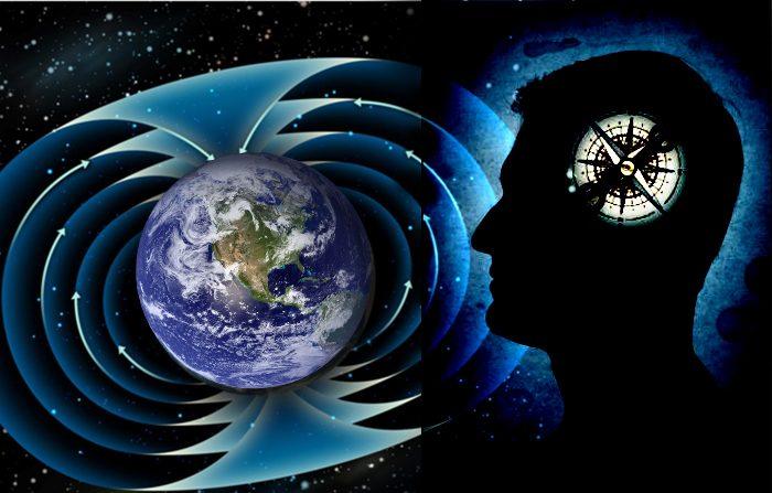 Anche l'uomo ha un sesto senso 'magnetico'?