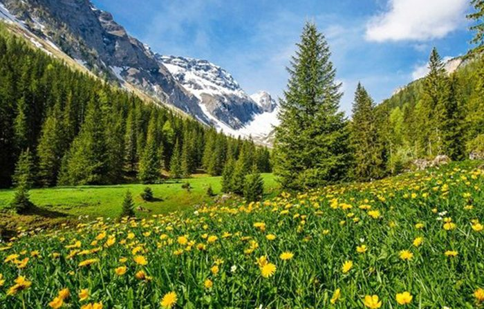 7 Mila anni di Storia emergono dai ghiacciai delle Alpi