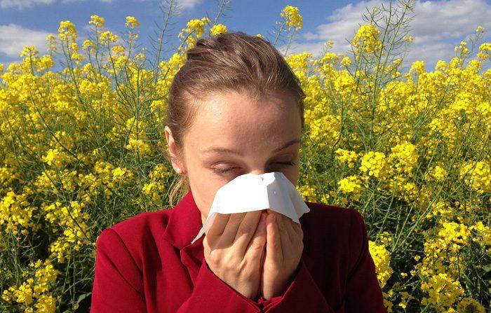 Cinque rimedi naturali contro le allergie
