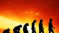 L'altra faccia della Scienza: la vita necessita di un Creatore