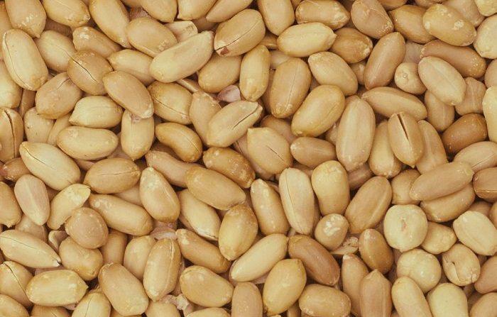 In arrivo la cura per l'allergia alle arachidi
