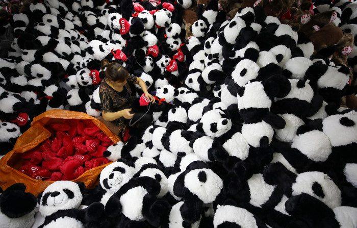Nessuno si fida dei prodotti fatti in Cina, i cinesi meno di tutti