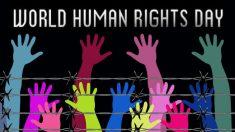 Giornata Mondiale dei Diritti Umani e prelievo forzato degli organi in Cina