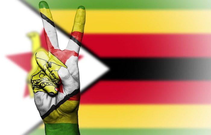 Luci e ombre del futuro dello Zimbabwe