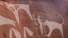 8 mila anni fa i cani stavano già al guinzaglio