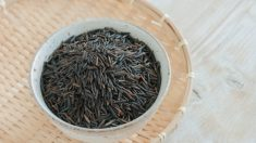 Il riso selvatico cinese