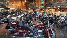 Dazi Usa, Harley-Davidson delocalizza