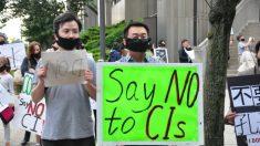 Critiche e opposizione agli Istituti Confucio
