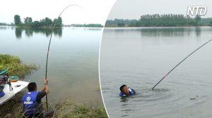 Carpa gigante trascina il pescatore in acqua