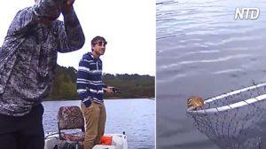Questo scoiattolo sta annegando nel lago, ma i pescatori lo salvano