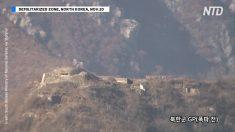 La pace tra le due Coree sembra sempre più vicina