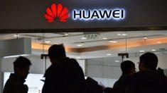 Rete 5G, anche il Giappone dice no a Huawei