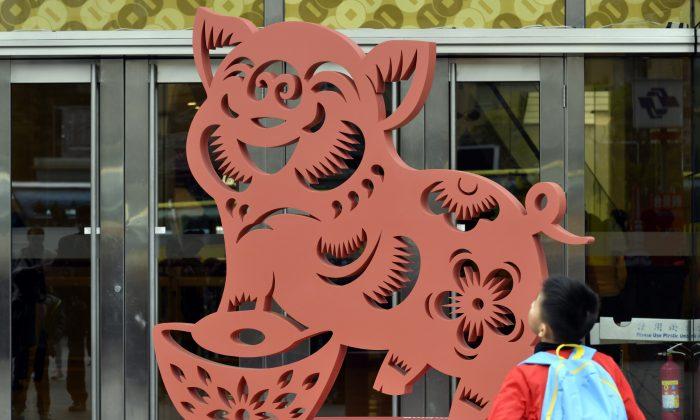 Cosa dicono i cinesi dei nati nell'anno del maiale