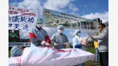 Sottrazione di organi, contro la Cina prove inconfutabili
