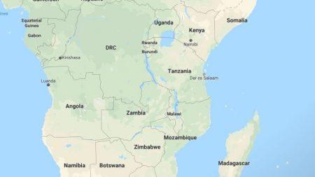 L'Onu avverte: l'Africa in pericolo per l'invasione delle locuste