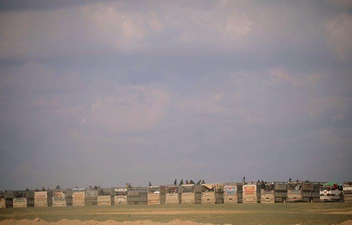 L'Isis quasi sconfitto in Siria