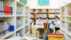 Torna l'educazione civica a scuola
