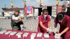 Il Venezuela sempre più coinvolto nel narcotraffico