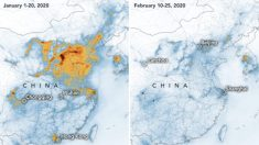 Nasa: Il coronavirus ha fatto calare l'inquinamento dell'aria in Cina