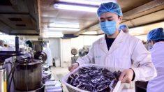 Coronavirus, rafforzare il sistema immunitario con la medicina tradizionale cinese