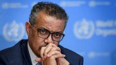 L'Italia si rialza, arrivano le prime azioni legali contro Pechino e l'Oms