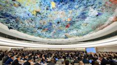 La Cina è membro del Consiglio per i diritti umani dell'Onu