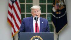 Trump sospende i finanziamenti all'Oms: «Ha fallito nel suo ruolo»