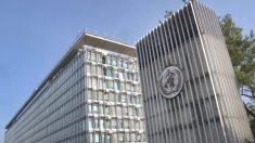 Usa, i fondi dell'Oms andranno ai Paesi colpiti dal virus