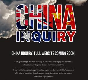 Screenshot dal sito 'China Inquiry'