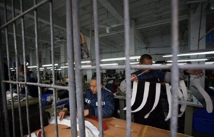 Dentro il sistema dei lavori forzati in Cina: «Si lavora come animali»