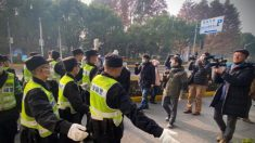 L'Ue chiede a Pechino di liberare la giornalista Zhang Zhan