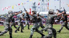 La Cina sta sviluppando 'super soldati' tramite l'ingegneria genetica