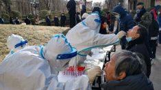 Città cinese da 11 milioni di abitanti blocca i viaggi, causa Covid