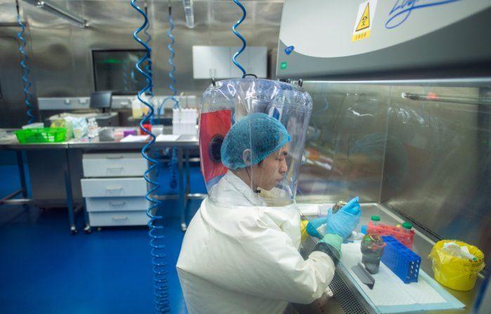 Video: Cancellati studi pubblicati dal laboratorio P4 di Wuhan – China in Focus