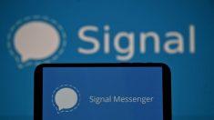 Signal registra 1,3 milioni di download in un giorno, al primo posto negli app store
