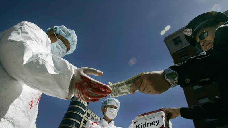 Come funziona l'oscura industria cinese dei trapianti di organi?   China in Focus