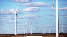 Le politiche 'green' vogliono «rifare l'economia» e «giustificare il controllo sulle persone»
