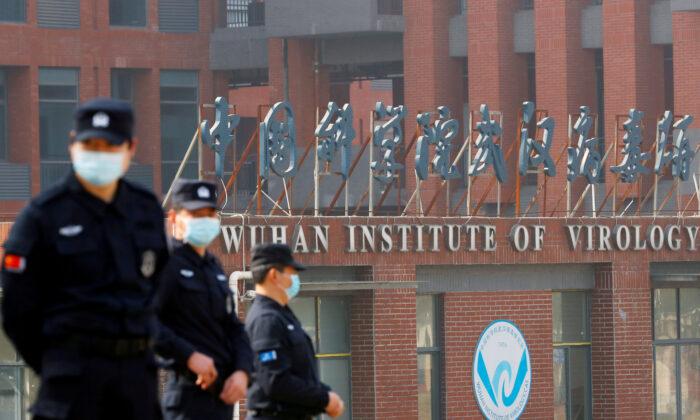Laboratorio di Wuhan, inquietanti novità sugli esperimenti con virus ingegnerizzati e pipistrelli