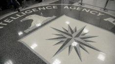 La Cia ha fallito con l'11 settembre, e ora si intromette nella politica interna