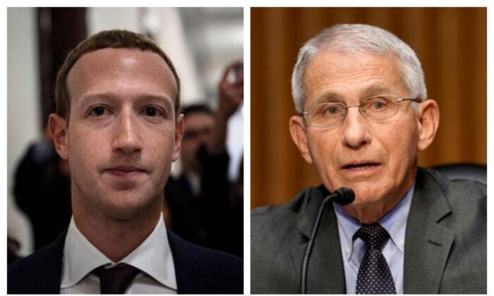 Repubblicani Usa: Zuckerberg deve pubblicare le informazioni di Fauci sul Covid