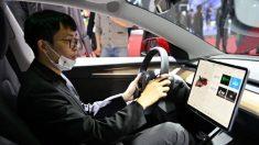 Tesla istituisce un centro dati in Cina, tutti i dati degli utenti rimarranno nel Paese