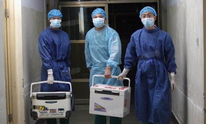 Trapianto di organi: il regime cinese uccide la gente per venderne gli organi | China in Focus