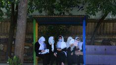 Talebani annunciano amnistia e affermano che le donne potranno lavorare e studiare