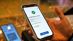 Green Pass falsi, aumentati del 257% i venditori online