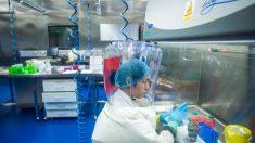 La ricerca sul coronavirus finanziata dagli Stati Uniti presso l'istituto di Wuhan