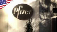 Scienziato Pfizer: l'immunità naturale funziona meglio del vaccino | Ntd News