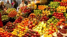 Frutta e Verdura: la festa all'Expo